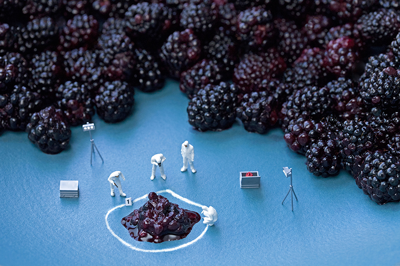 Blackberry CSI. © Christopher Boffoli